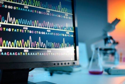 Você sabe o que é bioinformática?