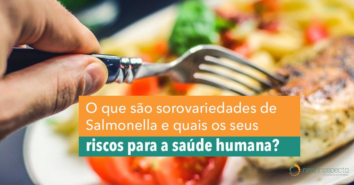 O que são sorovariedades de Salmonella e quais os seus riscos para a saúde humana?