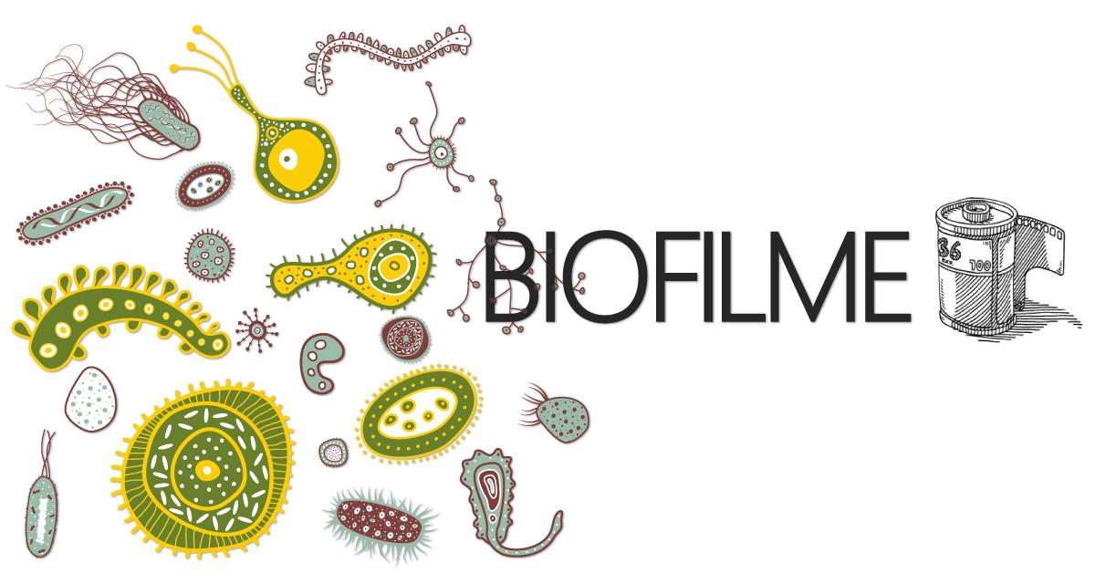Biofilme na indústria de alimentos
