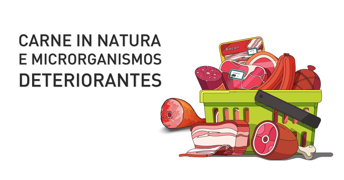 Carne in natura e microrganismos deteriorantes