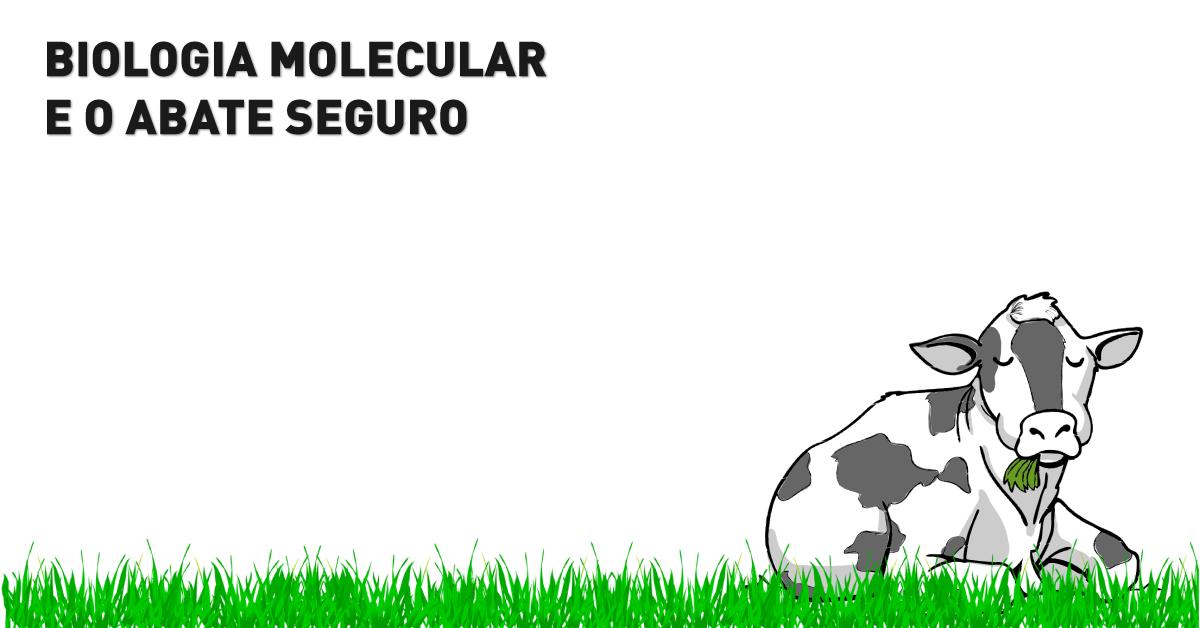 Biologia molecular e o abate seguro